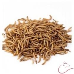 Sušené múčne červy 170g