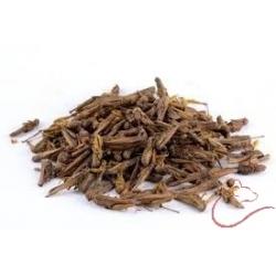 Sušené kobylky 100g