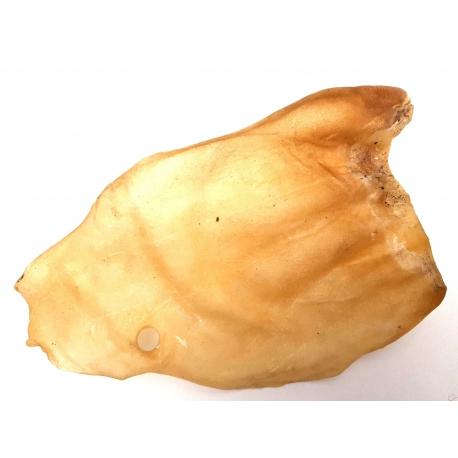 Sušené hovädzie ucho-veľké bez chlpov 1 kus