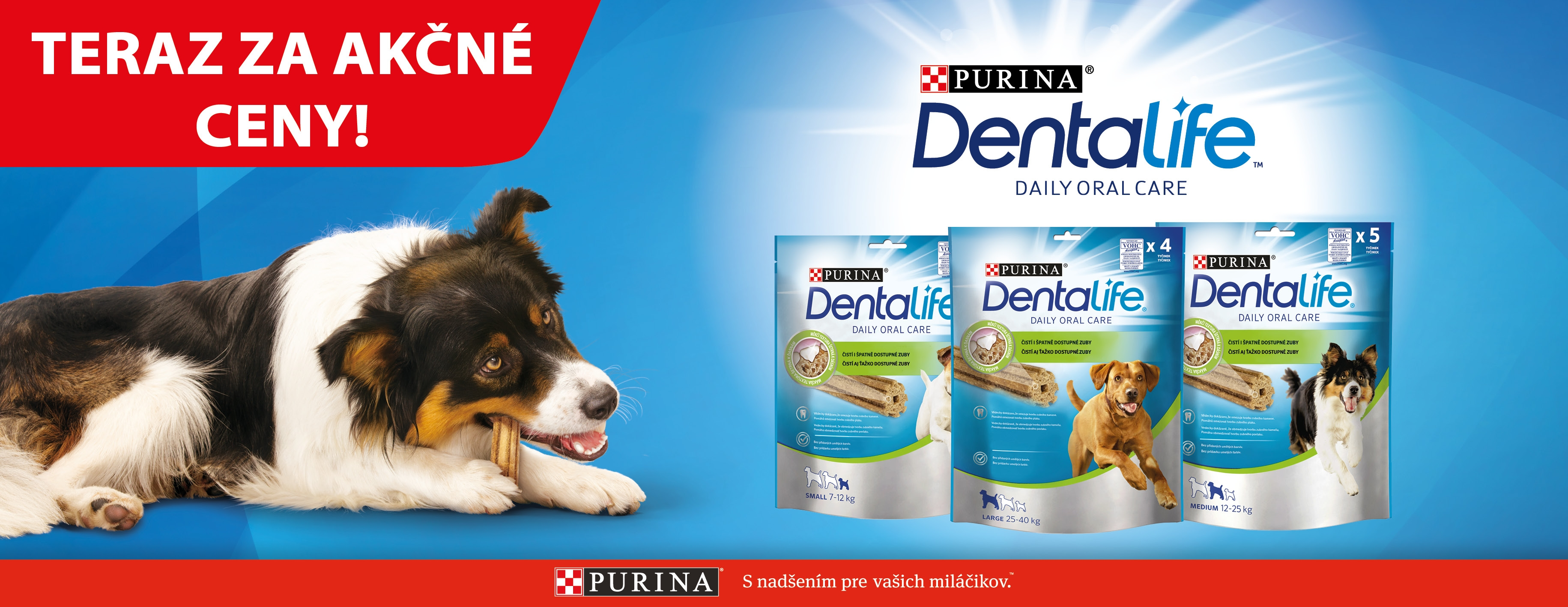 Dentalife Purina